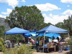 Arrowhead Point Resort shaded camping