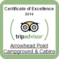 Visit Us On Trip Advisor!